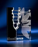 Rectangle Crevice Acrylic Award Achievement Awards